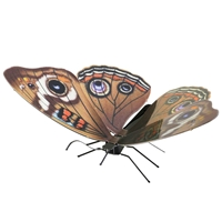 metal earthe  Butterflies - buckeye 1