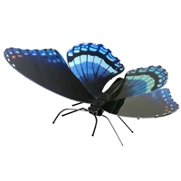 Metal Earth bugs - Red Spotted Purple 1