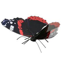 Metal Earth bugs - Red Admiral